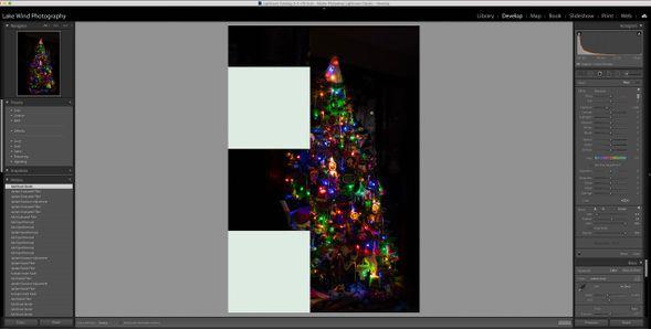 Screen Shot 2021-01-16 at 9.18.53 AM.jpg