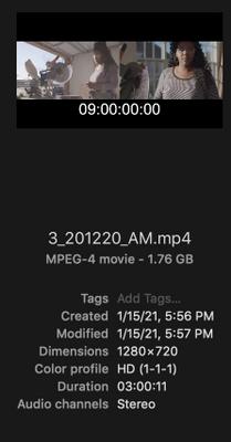 Screen Shot 2021-01-18 at 5.21.25 PM.png