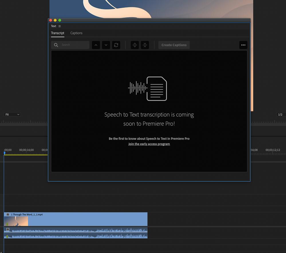 Screen Shot 2021-02-03 at 4.37.36 PM.png