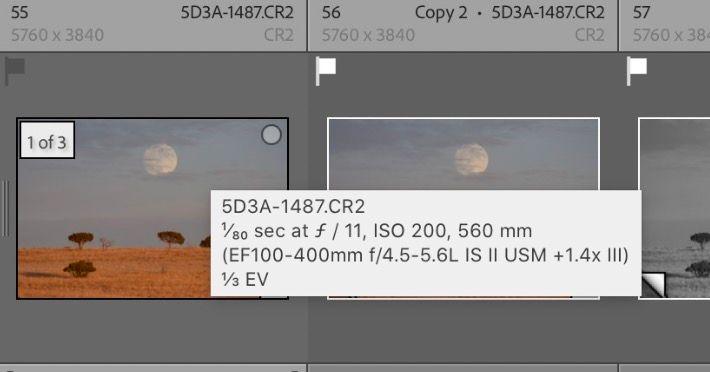 Screen Shot 2021-02-04 at 11.41.12 AM.jpg