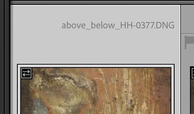 Screen Shot 2021-02-04 at 2.43.52 PM.png