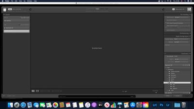 Screenshot 2021-02-11 at 14.16.22.png