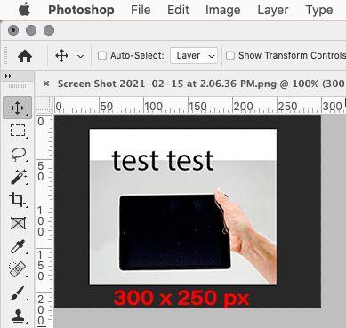 Photoshop 300 x 250 px.jpg