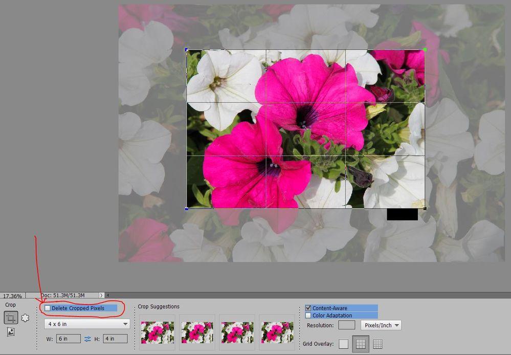 Delete Cropped Pixels.JPG