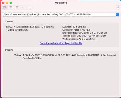 Screenshot 2021-03-07 at 11.05.47.png