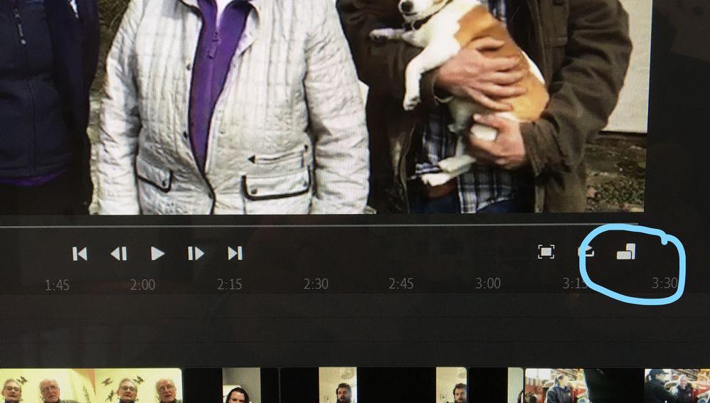 Adobe Premiere Rush querie.jpg