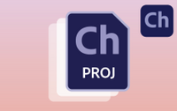New project file format.png