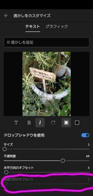Screenshot_20210311-091739_Lightroom.jpg