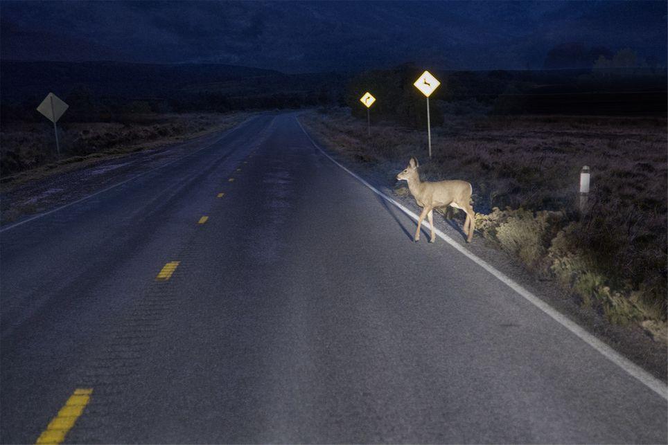 SFTW 132_Hit the Road_sm.jpg