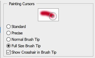 Brush Tip - Full Size Cursor.JPG