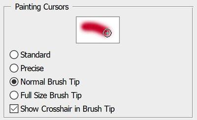 Brush Tip - Normal Cursor.JPG