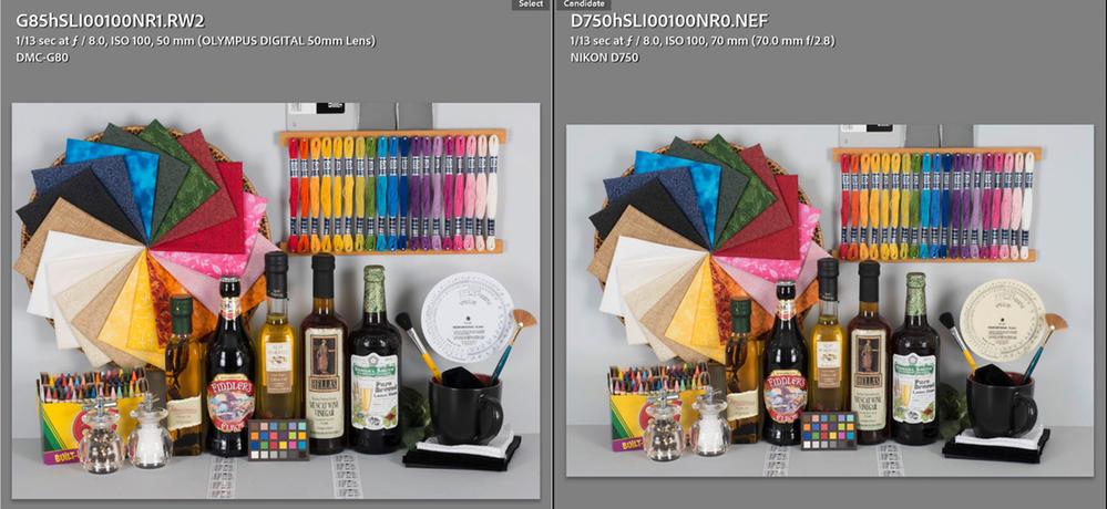 Panasonic G81 G85 Series vs Nikon D750 Adobe Standard.jpg