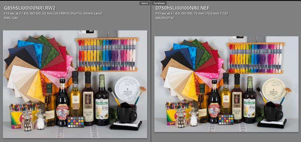 Panasonic G81 G85 Series vs Nikon D750 Adobe Standard Corrected.jpg