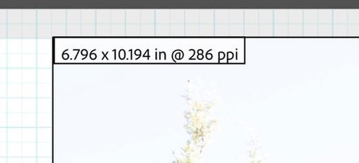 Screen Shot 2021-03-28 at 9.58.27 AM.jpg