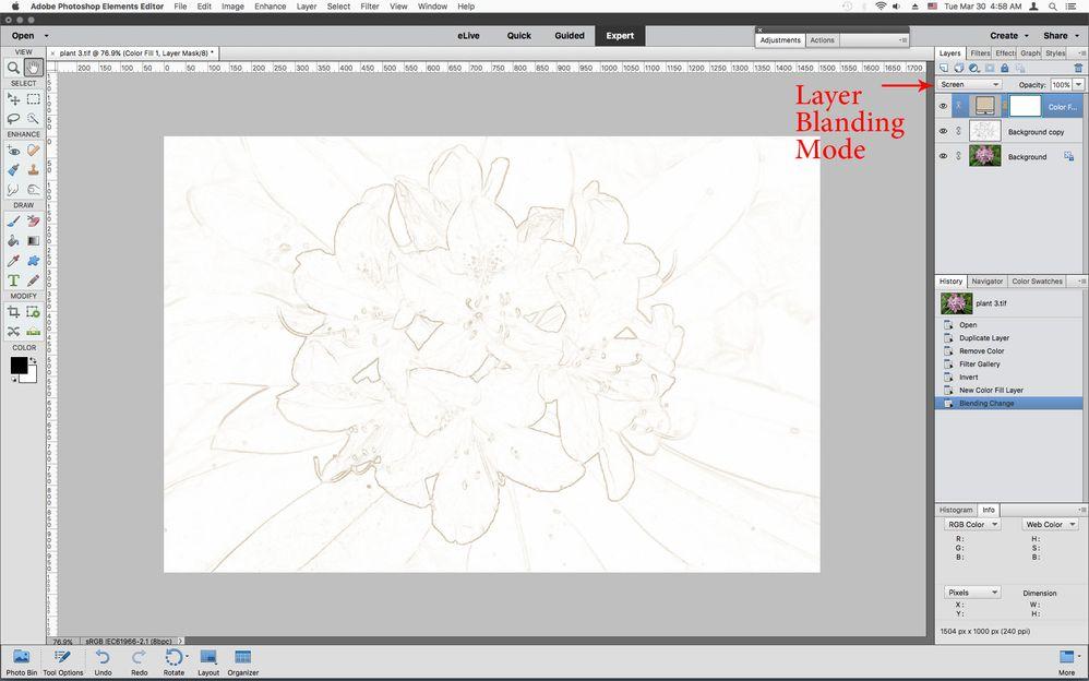 blend1.jpg