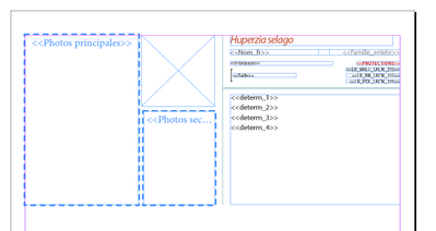 template copied into new document