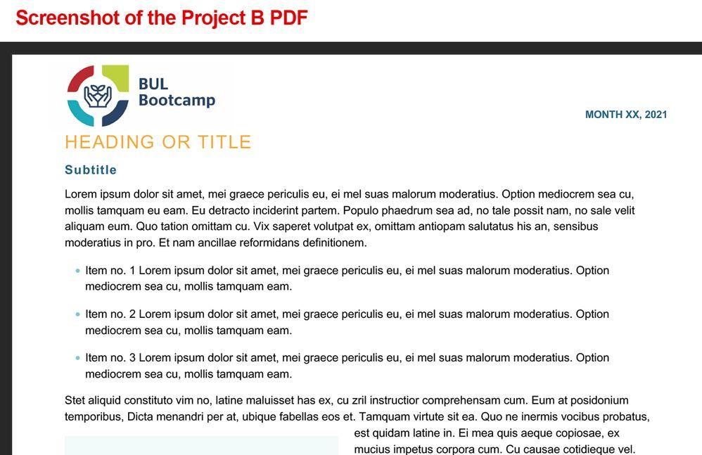 Project B PDF screenshot.jpg