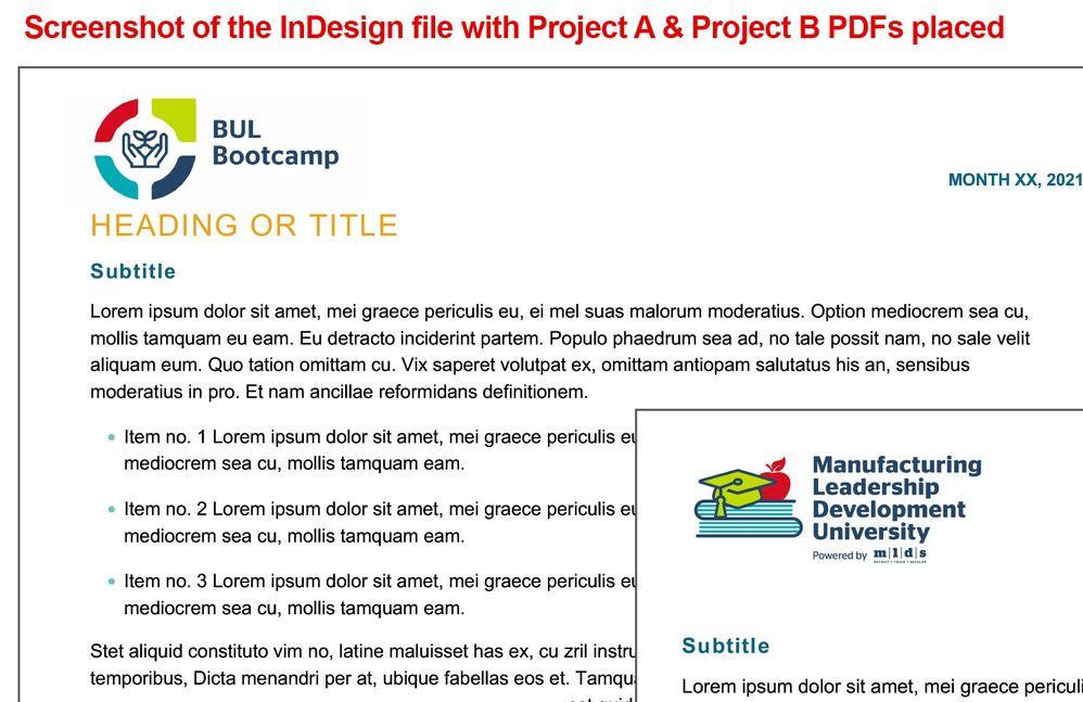 InDesign file screenshot.jpg