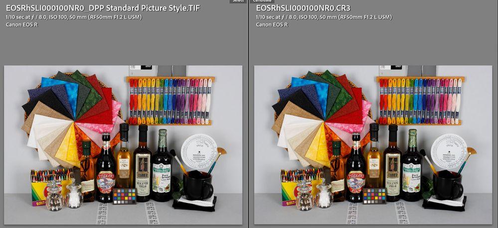 Canon EOS R Camera Matching Profiles-2.jpg