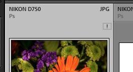 ScreenShot064.jpg