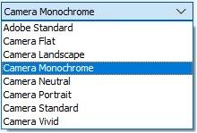 Drop down menu in Camera Raw Camera Prrofiles - kopie.png
