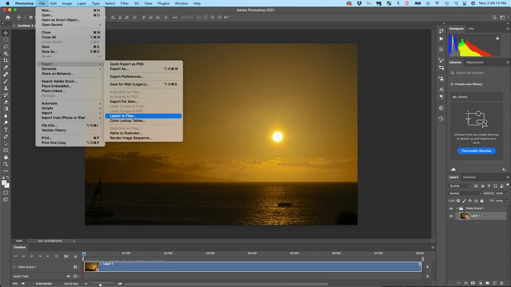 Screen Shot 2021-04-05 at 2.49.14 PM.png