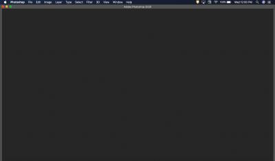 Screen Shot 2021-04-07 at 12.00.18 PM.png