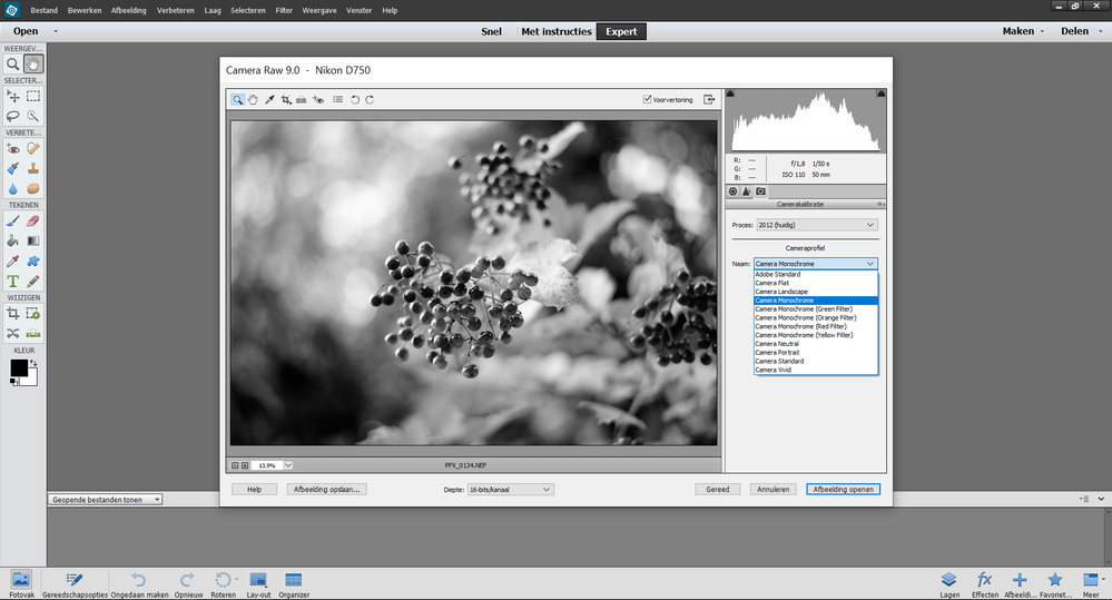 PSE13_Camera Raw 9_Camera Profiles - kopie.png