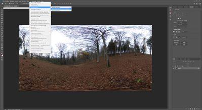 BUG Photoshop 2020 - 3D_Spherical Panorama (1).jpg