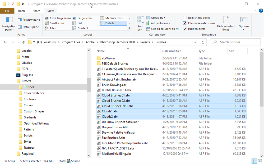 2021-04-13 14_33_56-C__Program Files_Adobe_Photoshop Elements 2020_Presets_Brushes.png
