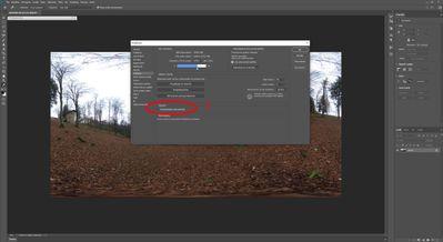 BUG Photoshop 2020 - 3D_Spherical Panorama (8).jpg