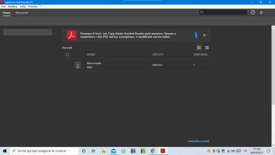 screenshot adobe.jpg