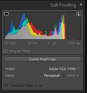 Soft Proofing.PNG