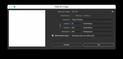 Capture d'écran 2021-05-01 à 12.04.45.png