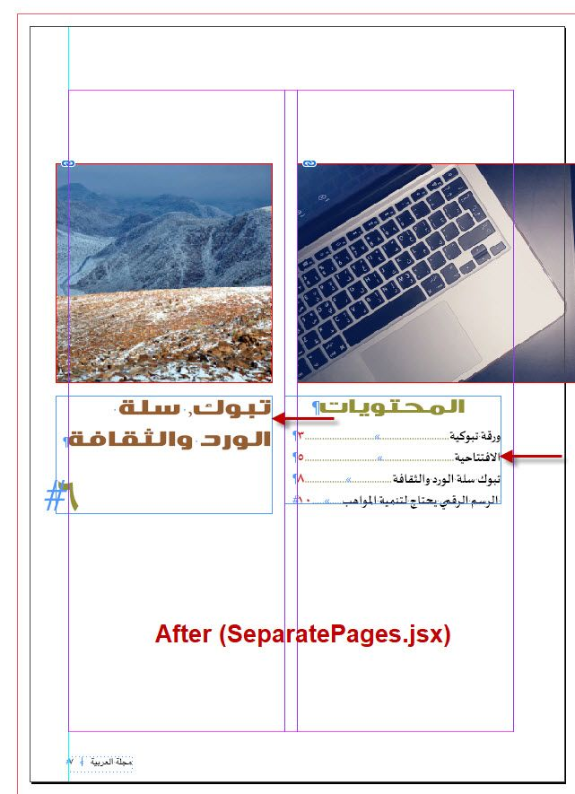 After Applying Seperate Pages Script.jpg