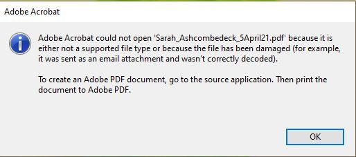 Adobe_Error.JPG