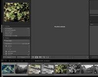 2021-05-14 08_36_31-Lightroom Catalog-v10 - Adobe Photoshop Lightroom Classic - Library.jpg