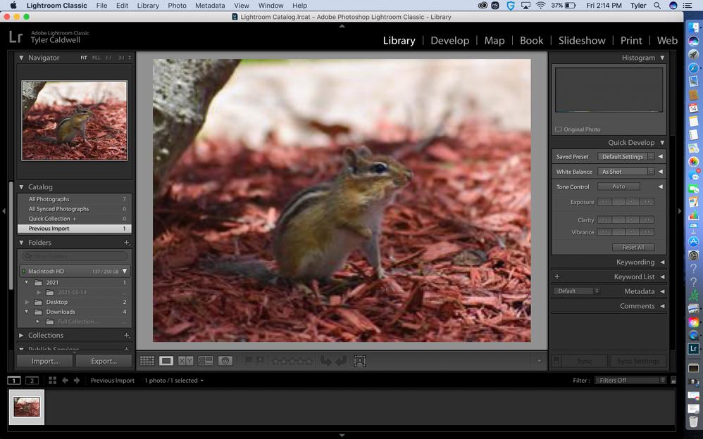 Screen Shot 2021-05-14 at 2.14.11 PM.png