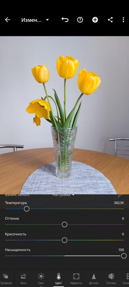 Screenshot_20210517-150916_Lightroom.jpg