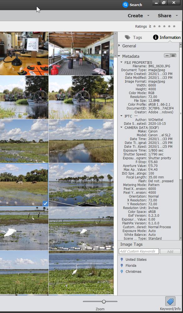 2021-05-22 22_16_53-Adobe Elements 2020 Organizer.png