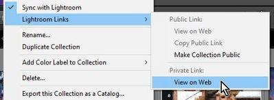 2021-05-27 12_38_04-Roberts Catalog-v10 - Adobe Photoshop Lightroom Classic - Library.jpg