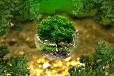 environmental-protection-326923.jpg