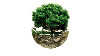 environmental-protection-683437-removebg-preview.png