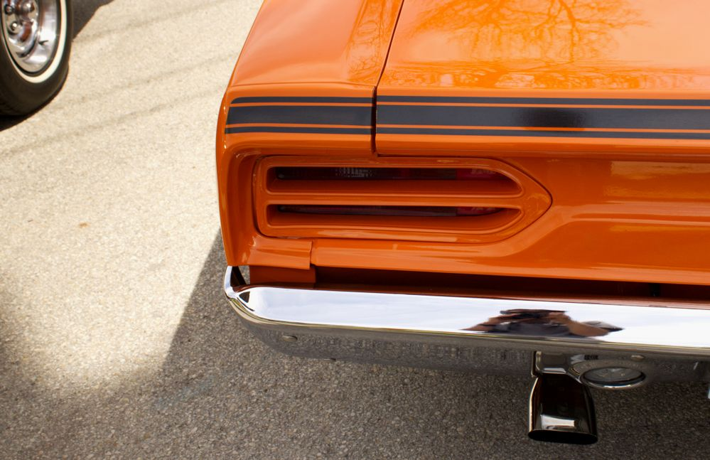 roadrunner tail a.jpg
