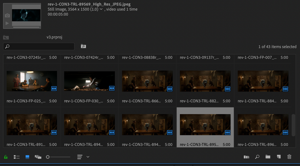 Project File Duplicates.png