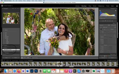 Screen Shot 2021-06-14 at 1.32.16 PM.png