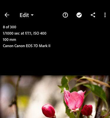 Screenshot_20210616-011551_Lightroom.jpg