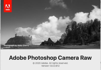 photoshop.elememnts.2021.editor.ACR.jpg