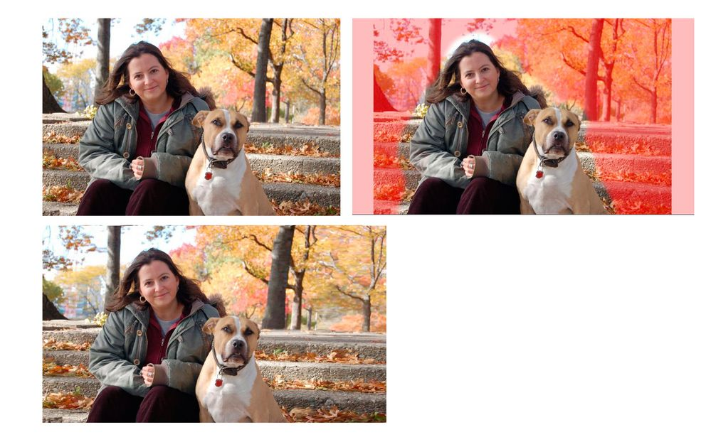 Amy series.jpg