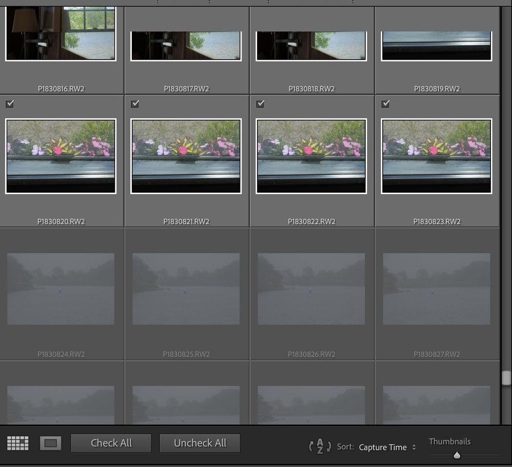 Screen Shot 2021-06-21 at 12.13.30 PM.jpg